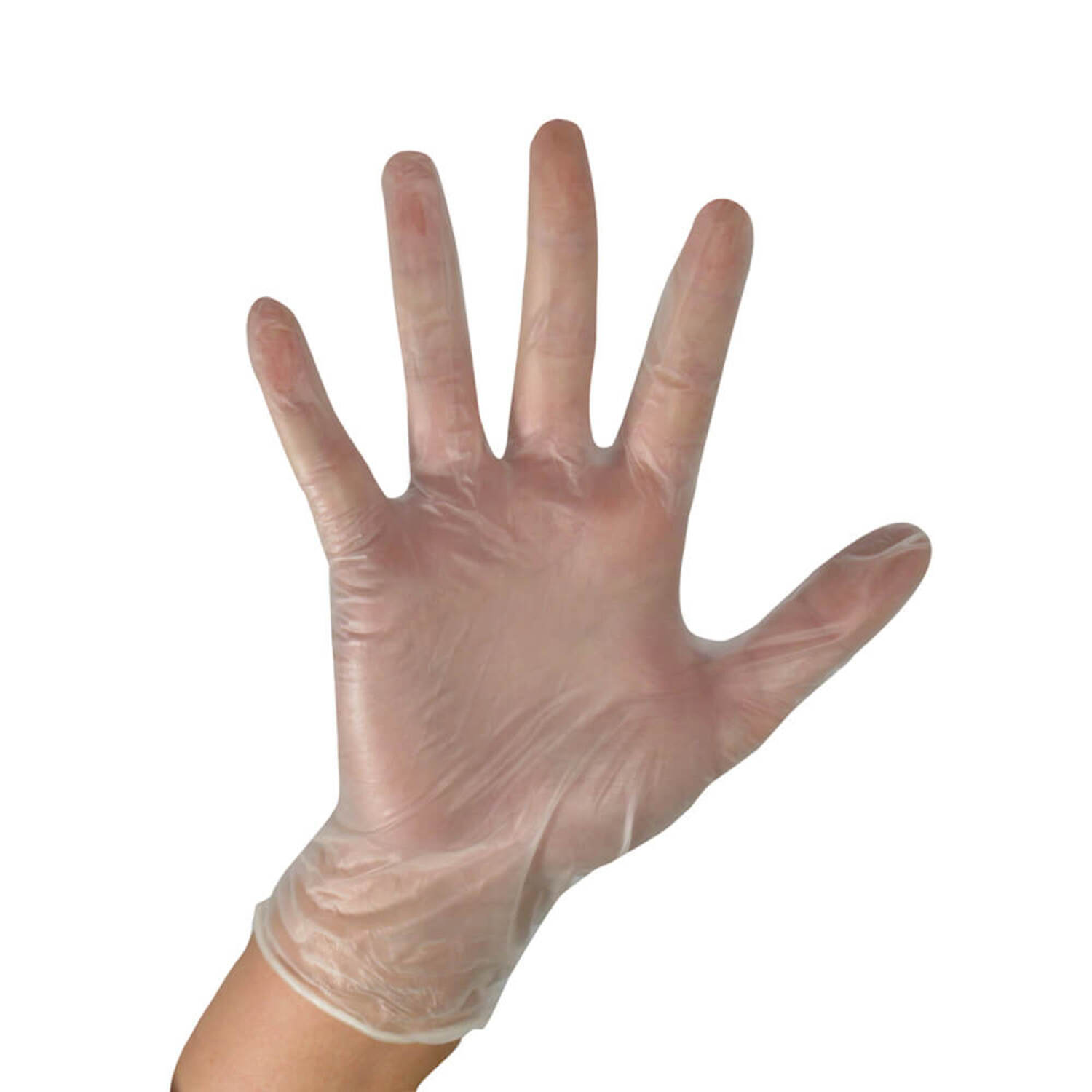 Clear Vinyl Powder Free Gloves Large