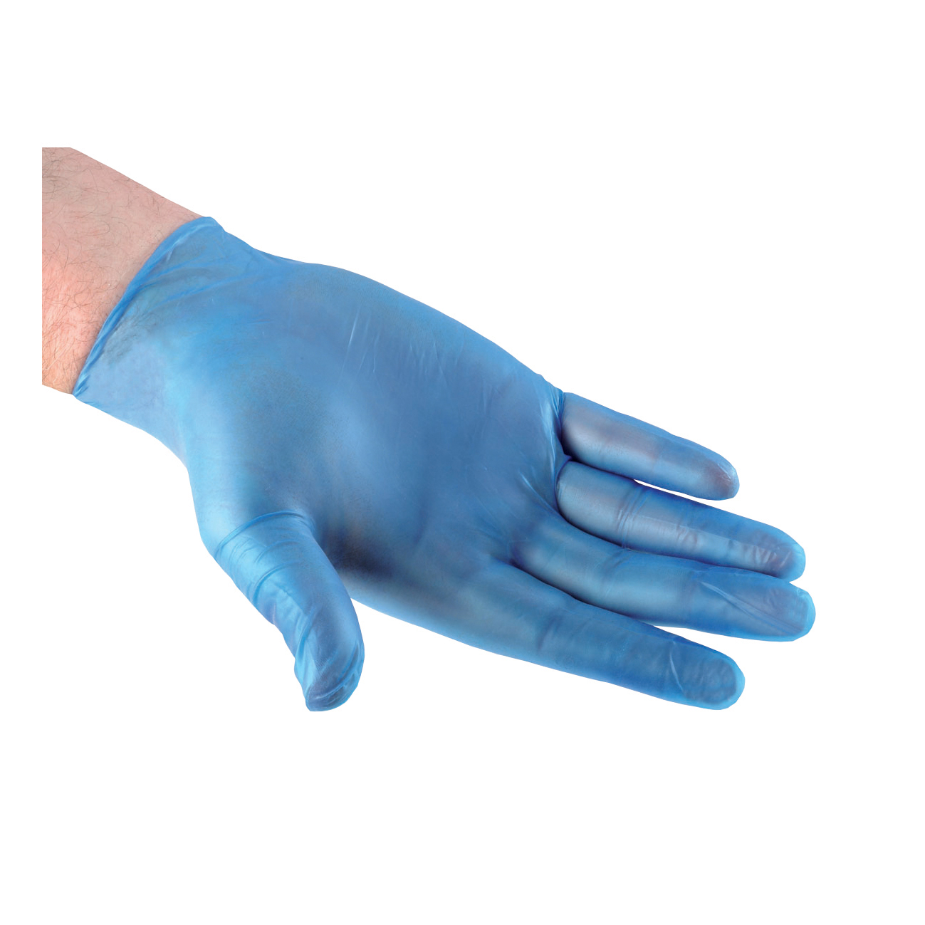 Disposable Gloves, Sz L, PK100